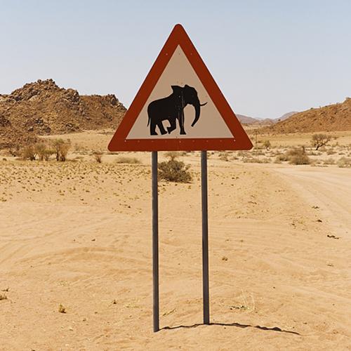Elephant road sign